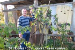 Bulgakov_sliva