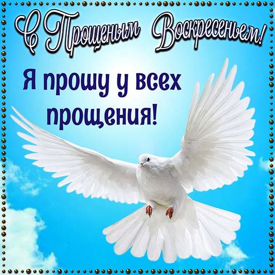 proshenie_1